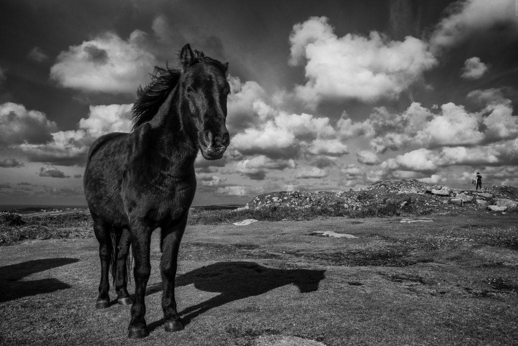 Leica 28mm Summicron asph., Fotografie von Jono Slack