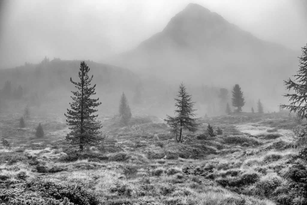 Am Staller Sattel, der Roßkopf im Nebel