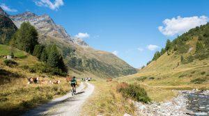 Mountainbiken mit der Leica Q