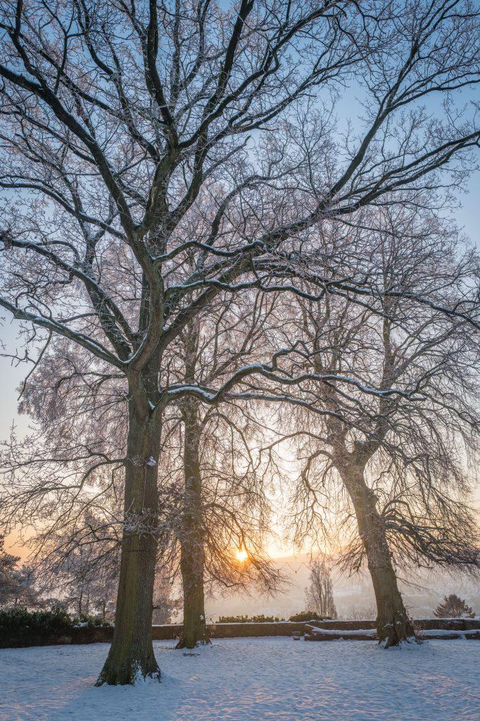 Leica Q bei f/4.0 1/200sec ISO 100, Wintermorgen am Burgplatz