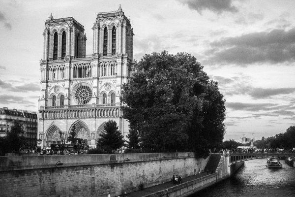 Notre Dame im Abendlicht