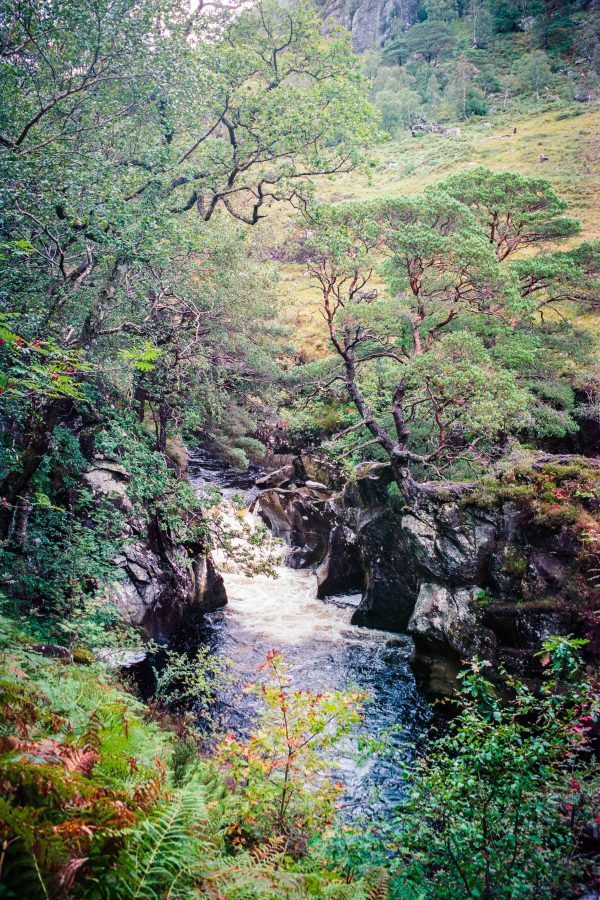River Nevis, M6 mit 50mm Summilux, Kodak Portra