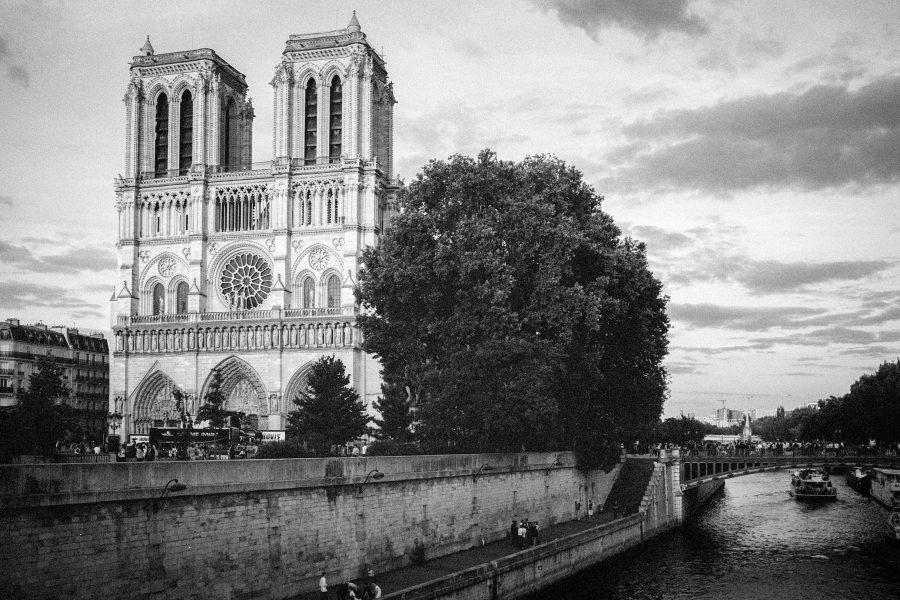 Notre Dame im Abendlicht, korrekt belichtetes Negativ