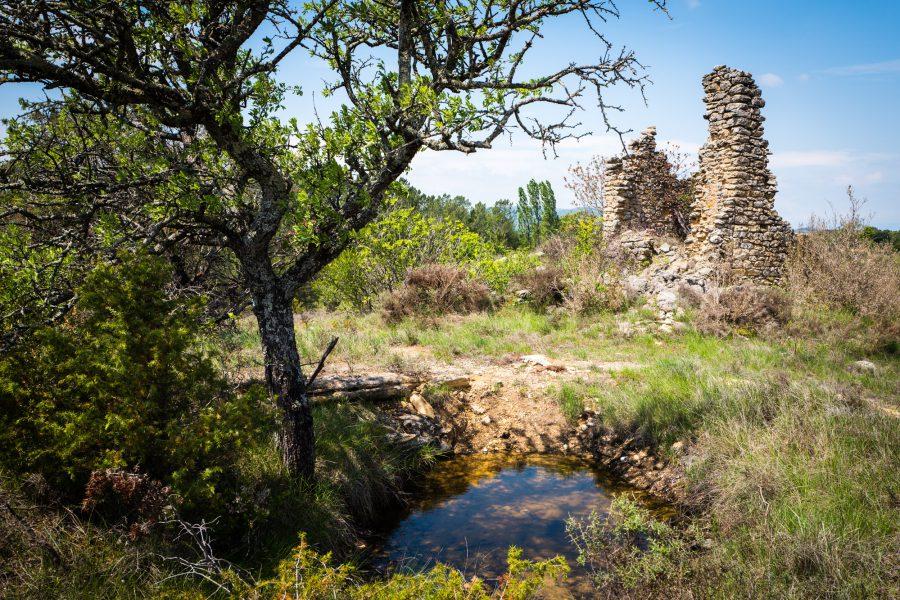 Provence: Die Quelle an der Ruine
