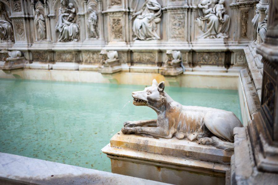 Il Campo: Am Brunnen. Die römische Wölfin ist in Siena allgegenwärtig