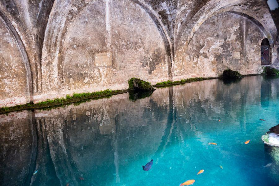Die Quelle Fontebranda