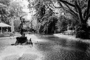 Avignon. Leica M4, Kodak TMax 400