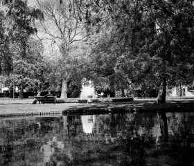 Im Ravensberger Park. Ilford HP5, Orange Filter
