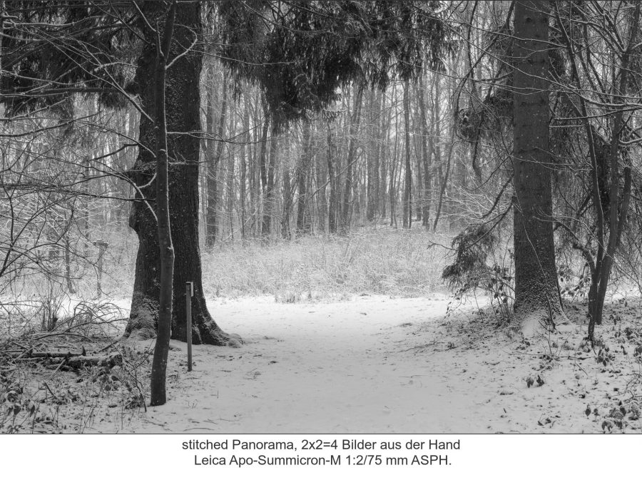 Leica Apo-Summicron-M 1:2/75 mm ASPH.