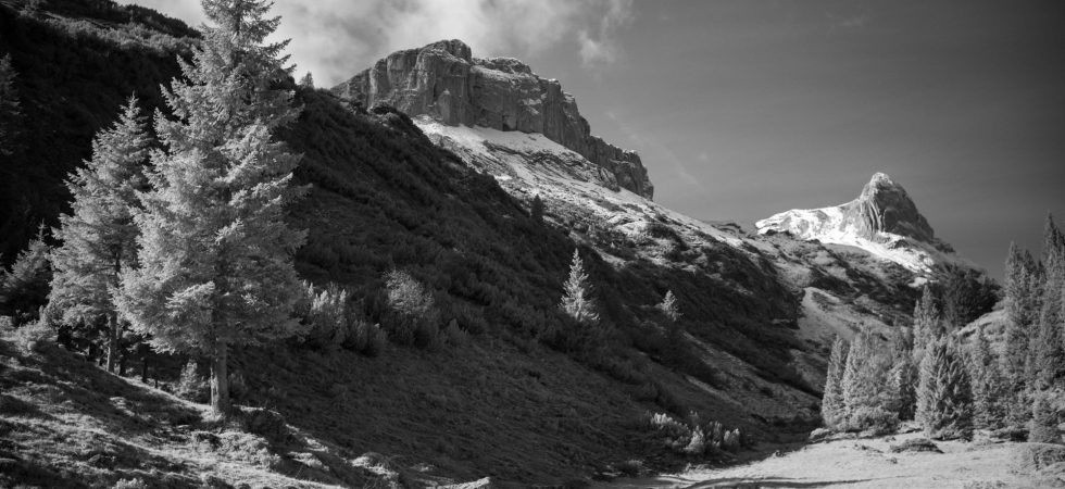 Infrared photography with the M10 Monochrom