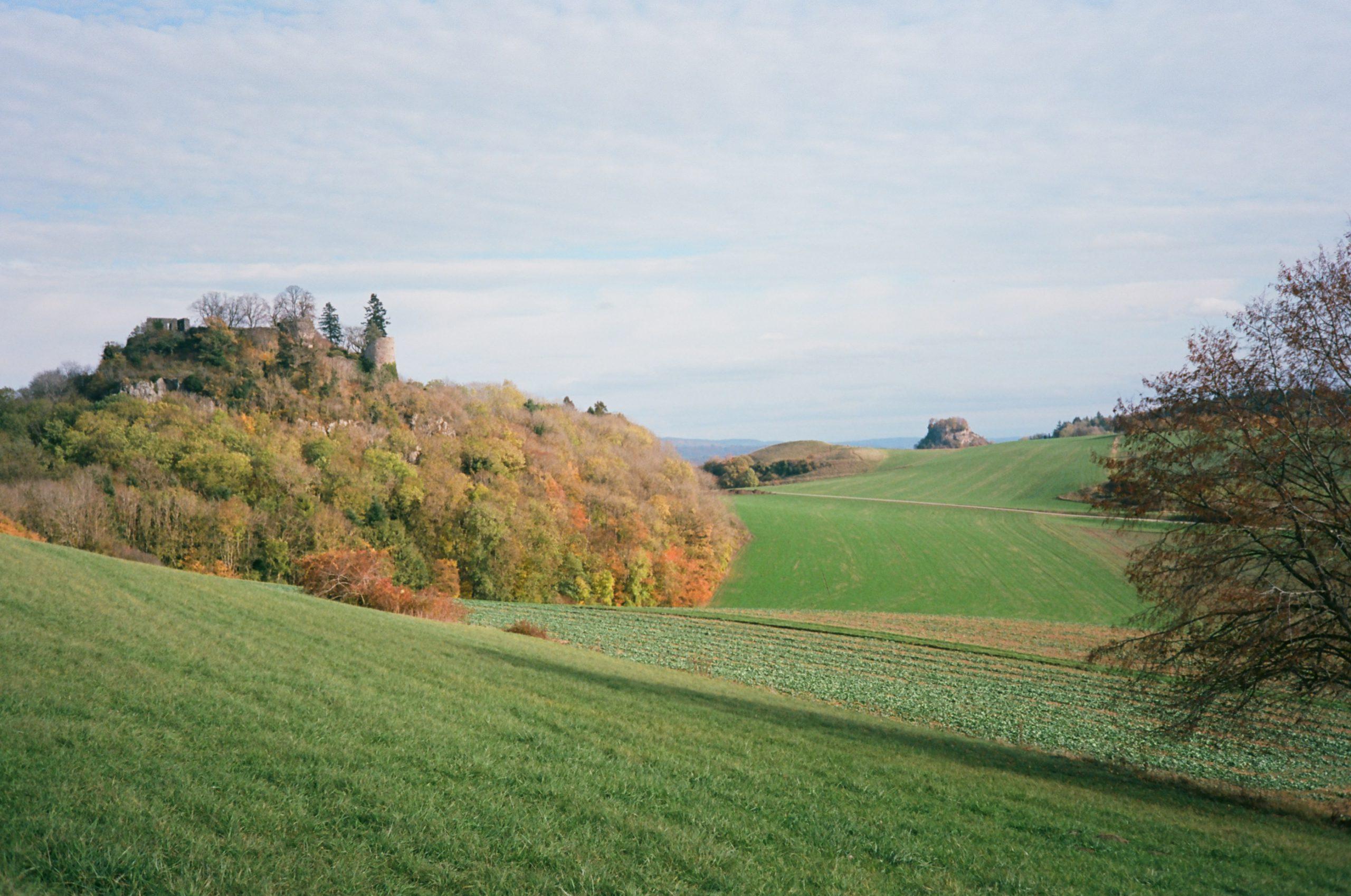 Zarte Farben an diesem etwas bedeckten Herbsttag, für mich ein schönes Zusammenspiel aus Objektiv und Film. Rollei 35 RF mit Rollei Sonnar 40/2.8. Kodak Ektar 100.