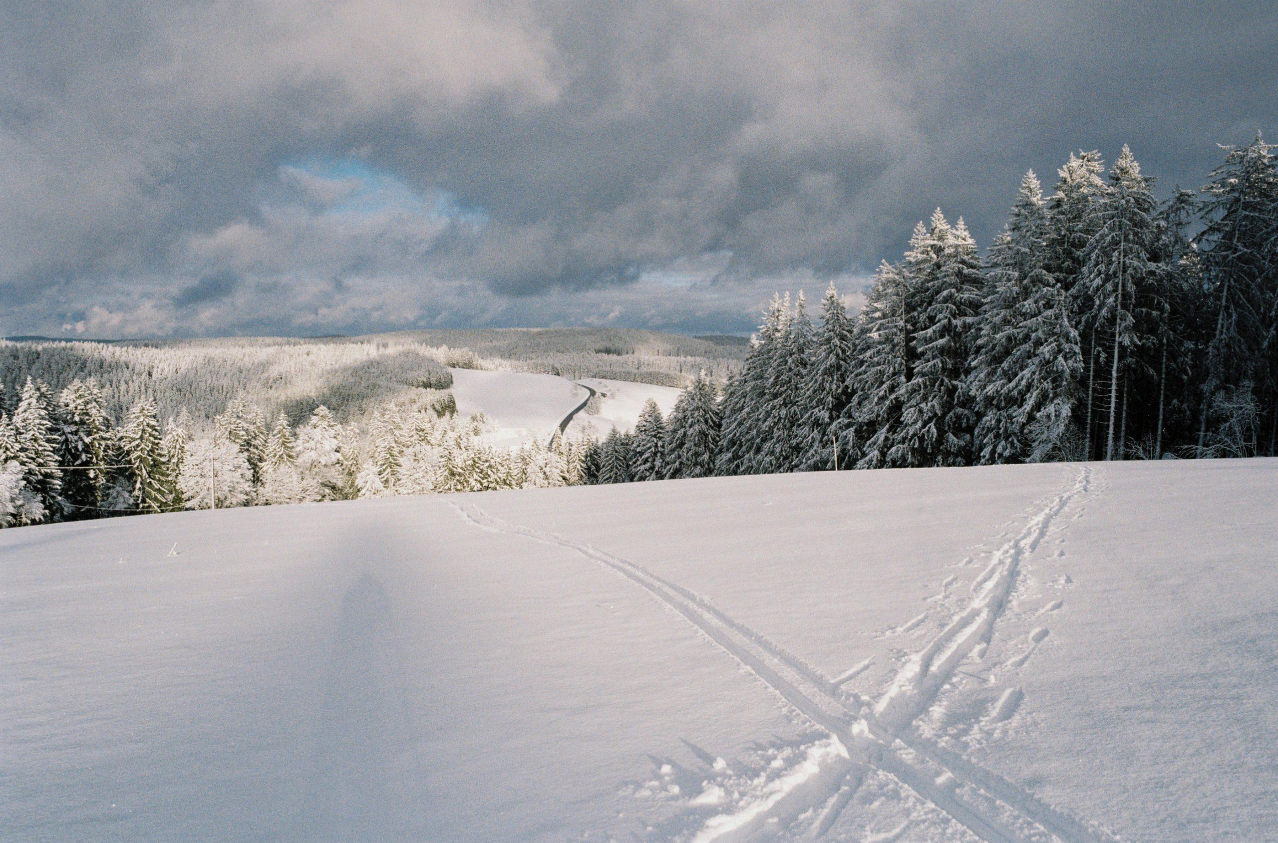 Quo vadis? Skispuren im frischen Schnee des Schwarzwaldes. Zeiss Ikon mit Biogon 35/2.8 ZM. Kodak ProImage 100