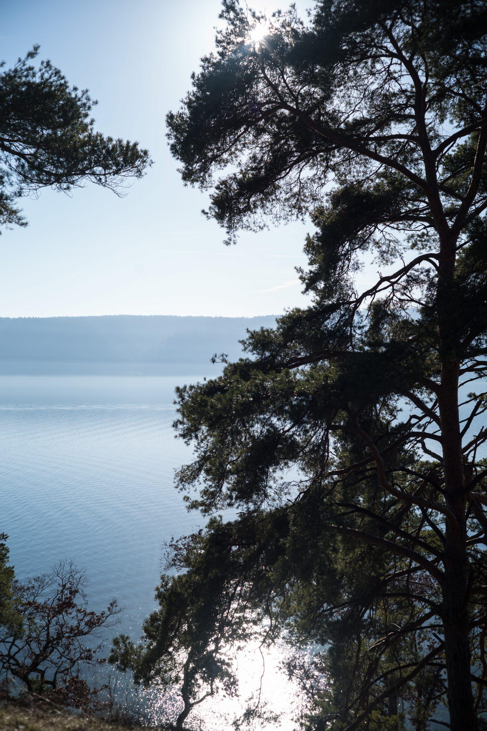 Nein, das ist nicht am Mittelmeer, sondern am Bodensee. Aber hier geht es um das Gegenlicht. Hier schlägt sich das M-Rokkor 40 wacker. Minolta M-Rokkor 40/2 an Leica M10, leichte Korrekturen in Lightroom