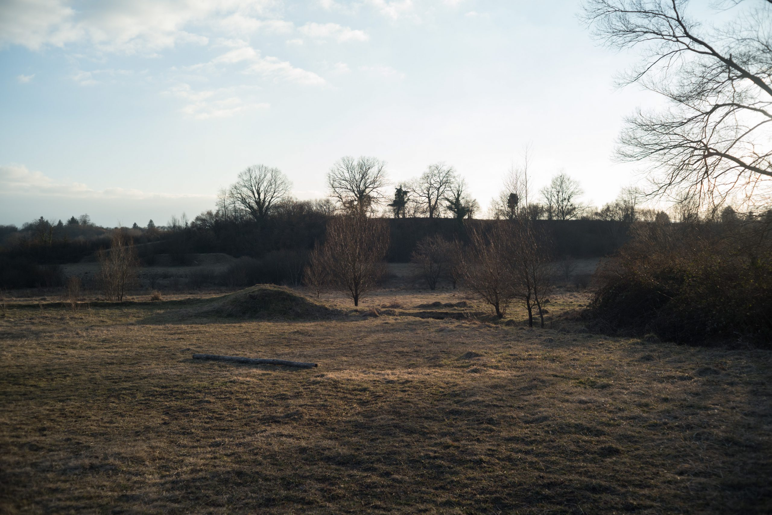Und, ist morgen nochmals Winter oder schon Frühling? Abend bei Konstanz. Minolta M-Rokkor 40/2 an Leica M10, leichte Korrekturen in Lightroom