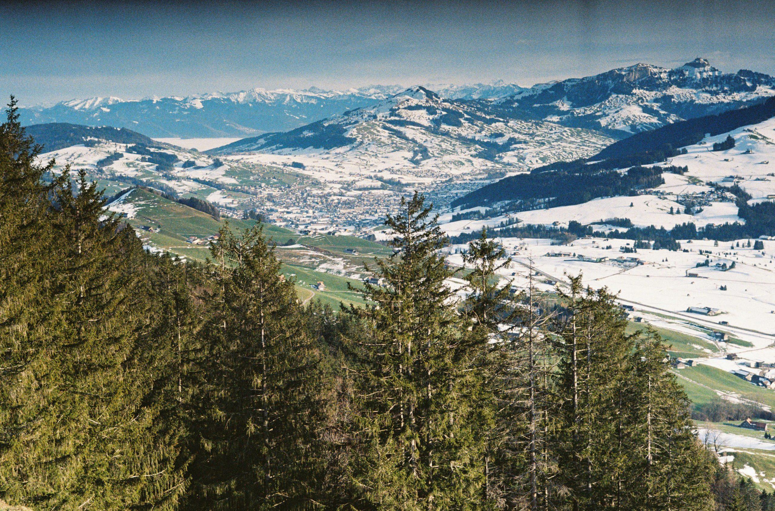 Es ist immer wieder toll: Im Rheintal (oben links) oder am Bodensee sitzen wir im Nebel und können uns gar nicht vorstellen, wie nahe es in die Sonne ist.  Elmar-C 90/4 an Leica CL (Ausschnitt wegen eines Verschluss-Problems am oberen Rand). Kodak Ultramax 400